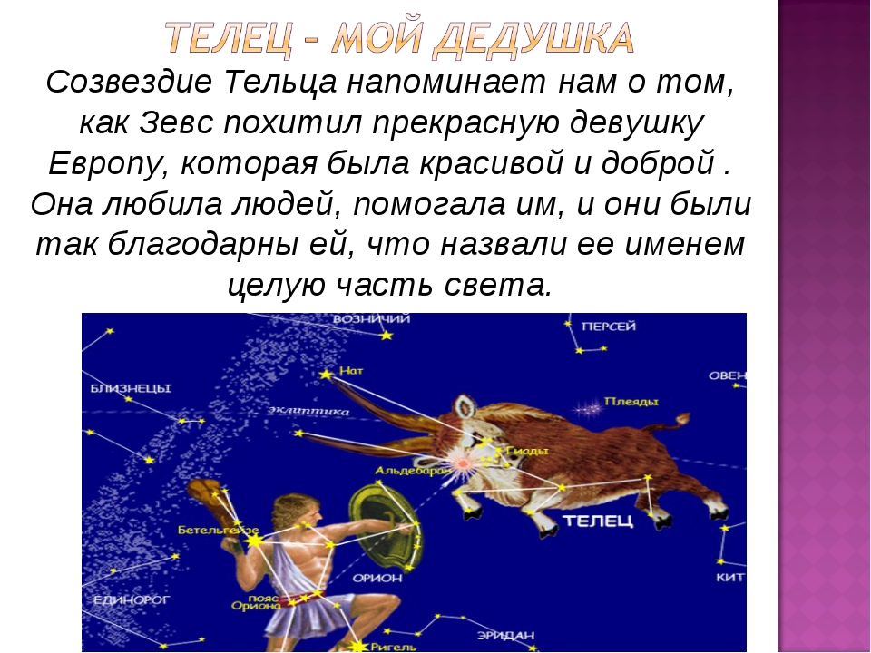 Созвездие Тельца напоминает нам о том, как Зевс похитил прекрасную девушку Ев...