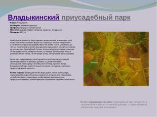 Владыкинский приусадебный парк Район:Ртищевский Категория:памятник природы