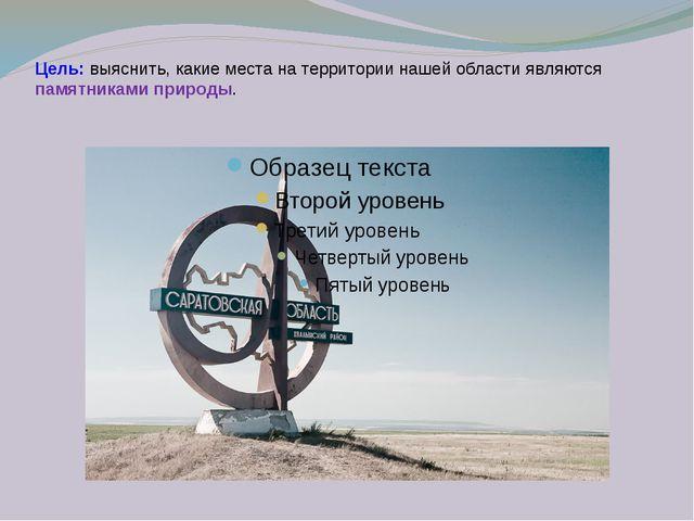 Цель: выяснить, какие места на территории нашей области являются памятниками...