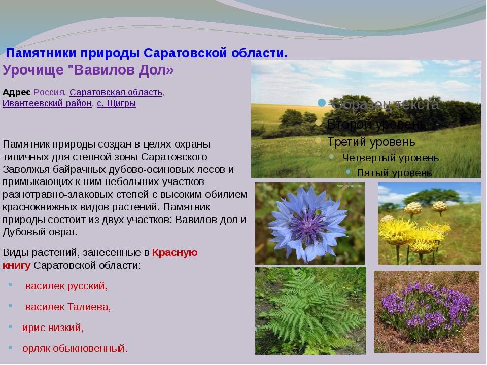Памятники природы саратовской области фото и описание изготовление памятников и надгробий в астане