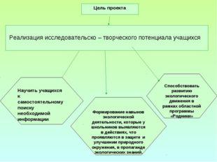 Формирование навыков экологической деятельности, которые у школьников выявляю