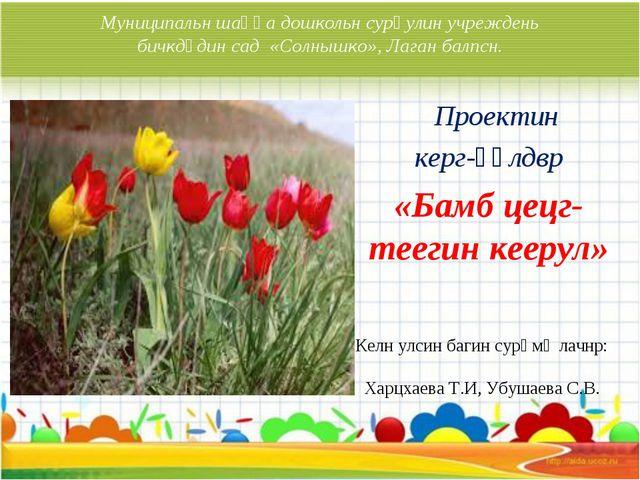 Муниципальн шаңһа дошкольн сурһулин учреждень бичкдүдин сад «Солнышко», Лаган...
