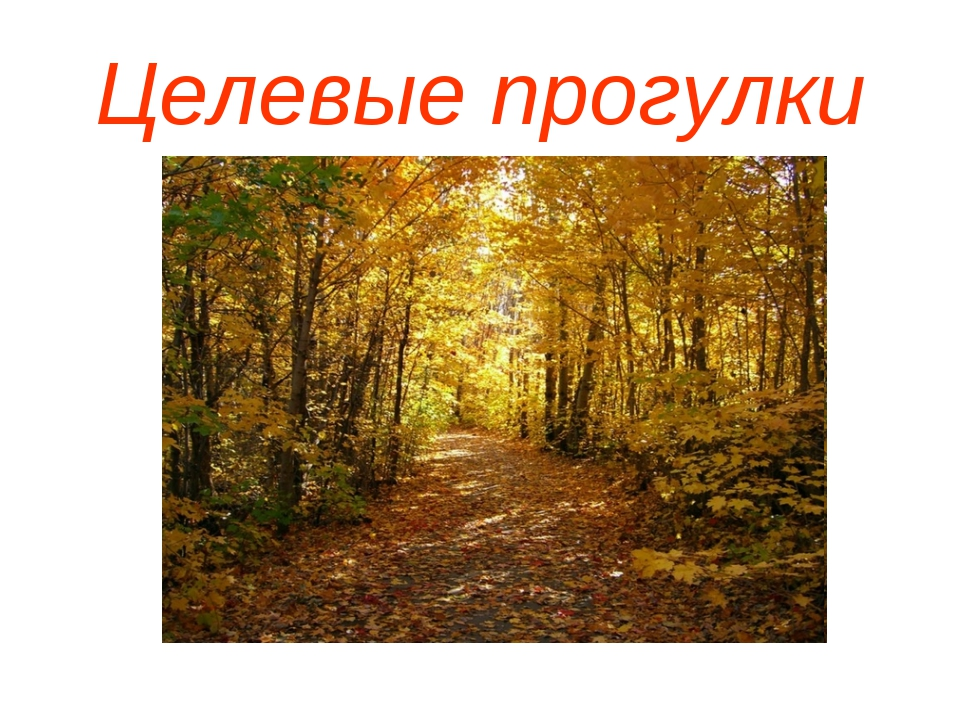 Целевые прогулки
