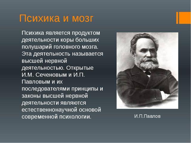 Психика и мозг Психика является продуктом деятельности коры больших полушарий...