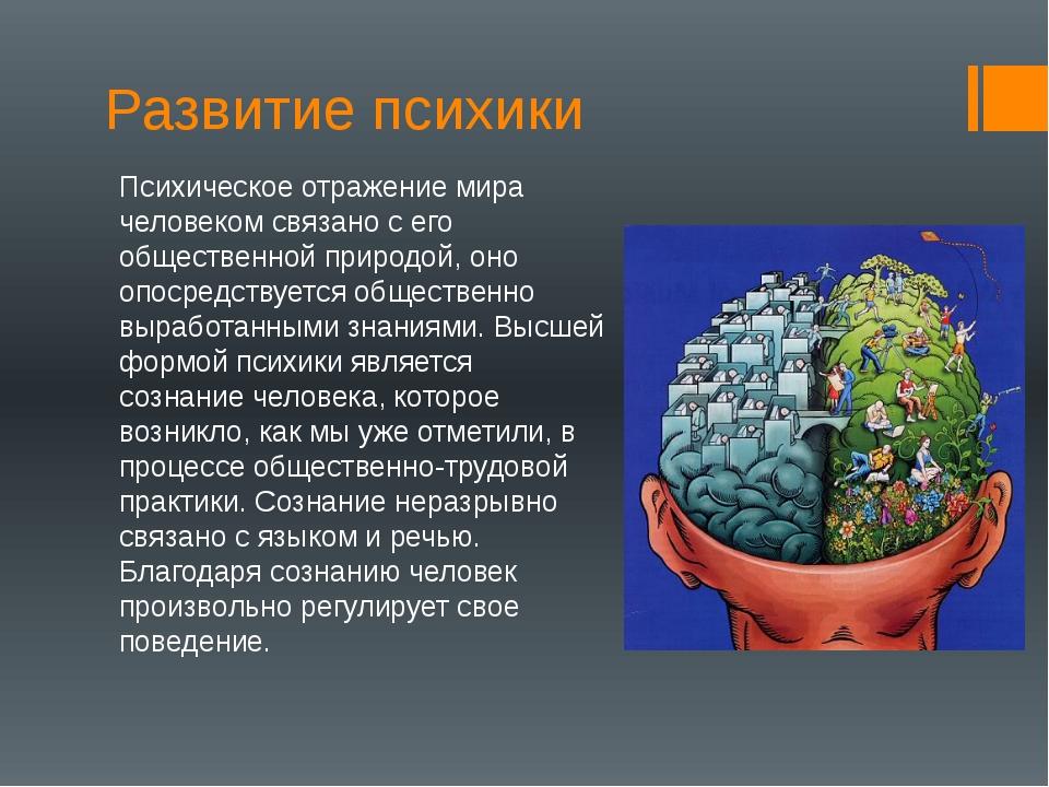 Развитие психики Психическое отражение мира человеком связано с его обществен...