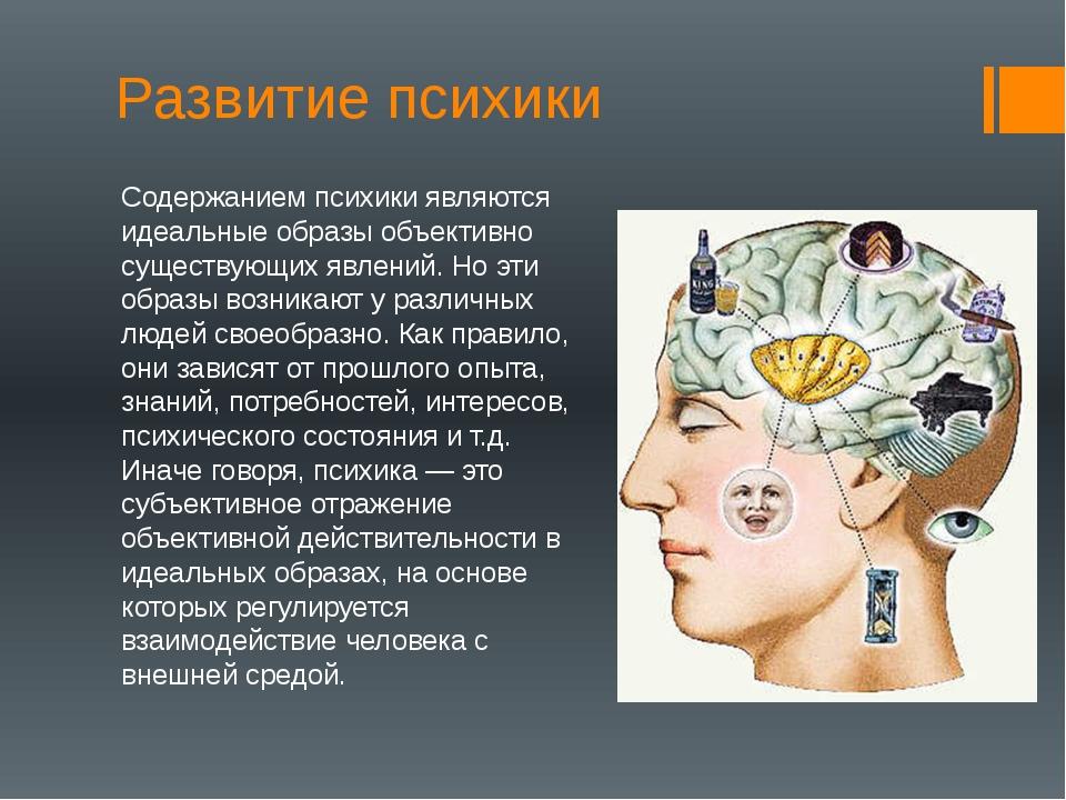Развитие психики Содержанием психики являются идеальные образы объективно сущ...