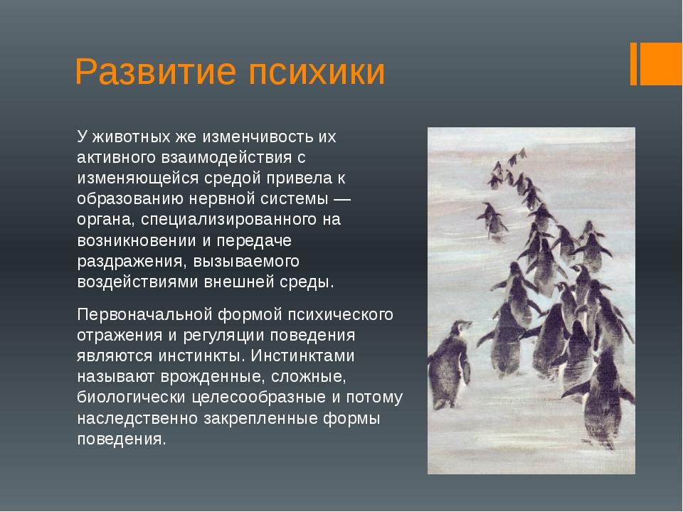 Развитие психики У животных же изменчивость их активного взаимодействия с изм...