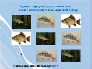 Задание: определи группу животных, вставь недостающее и докажи свой выбор. Ка