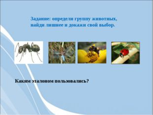 Задание: определи группу животных, найди лишнее и докажи свой выбор. Каким эт