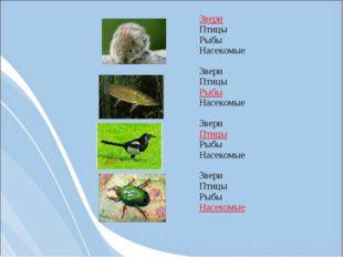 Звери Птицы Рыбы Насекомые Звери Птицы Рыбы Насекомые Звери Птицы Рыбы Нас