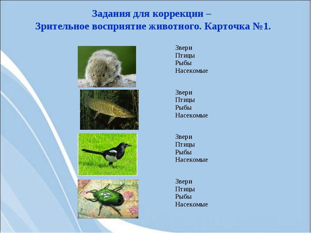 Задания для коррекции – Зрительное восприятие животного. Карточка №1. Звери...