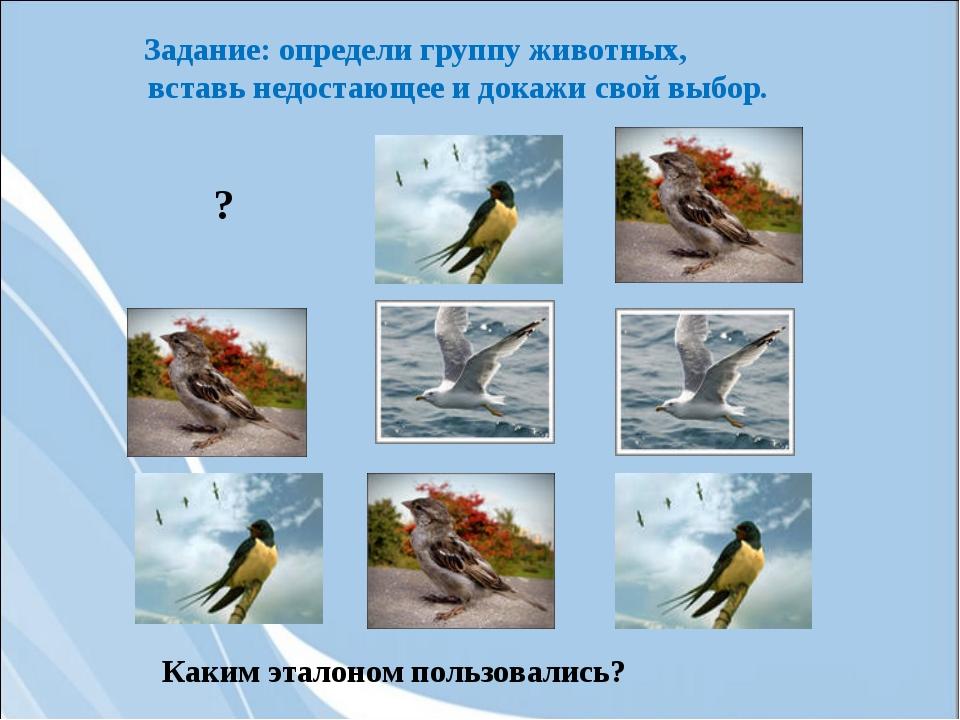 Задание: определи группу животных, вставь недостающее и докажи свой выбор. Ка...