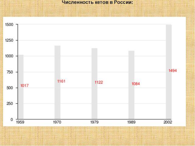 Численность кетов в России: