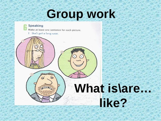 Group work What is\are…like?