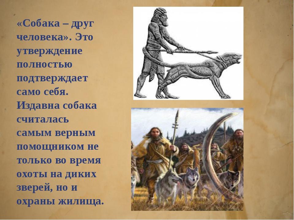 «Собака – друг человека». Это утверждение полностью подтверждает само себя. И...