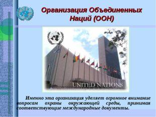 Организация Объединенных Наций (ООН) Именно эта организация уделяет огромное