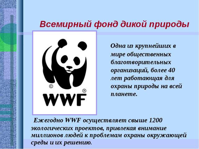 Ежегодно WWF осуществляет свыше 1200 экологических проектов, привлекая внима...