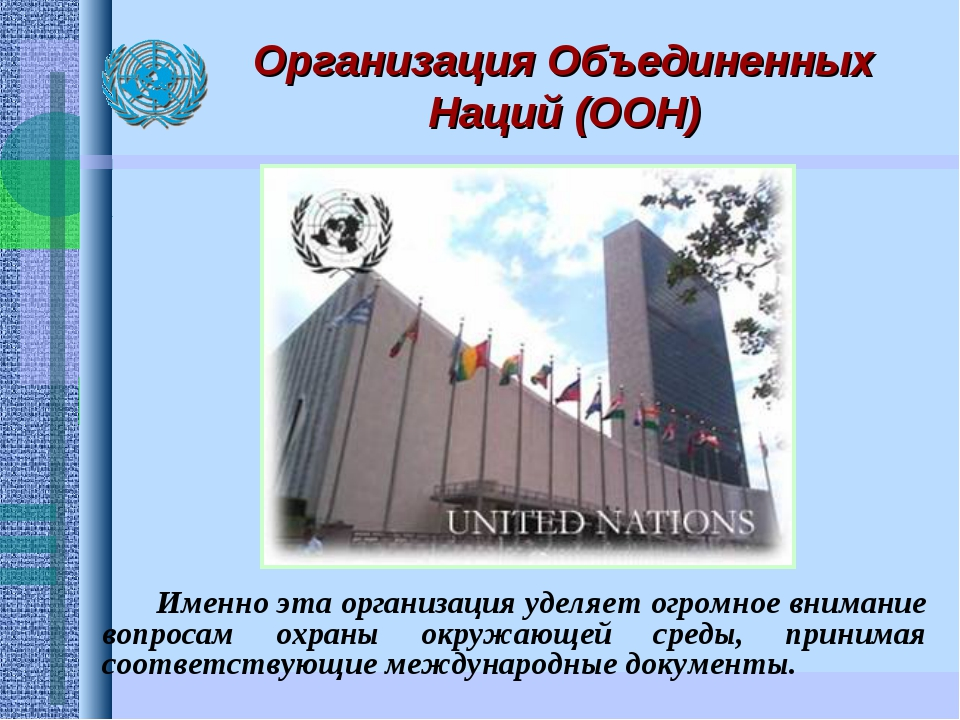 Организация Объединенных Наций (ООН) Именно эта организация уделяет огромное...