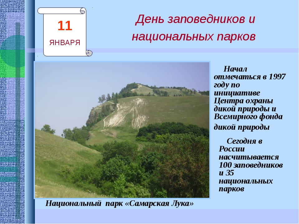 День заповедников и национальных парков Сегодня в России насчитывается 100 за...