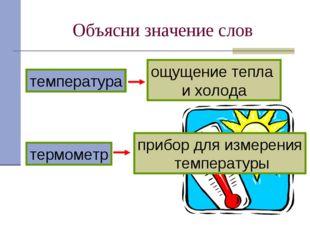 Объясни значение слов термометр температура прибор для измерения температуры