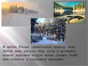 Я люблю, Россия, удивительную природу твою. Люблю нашу русскую зим