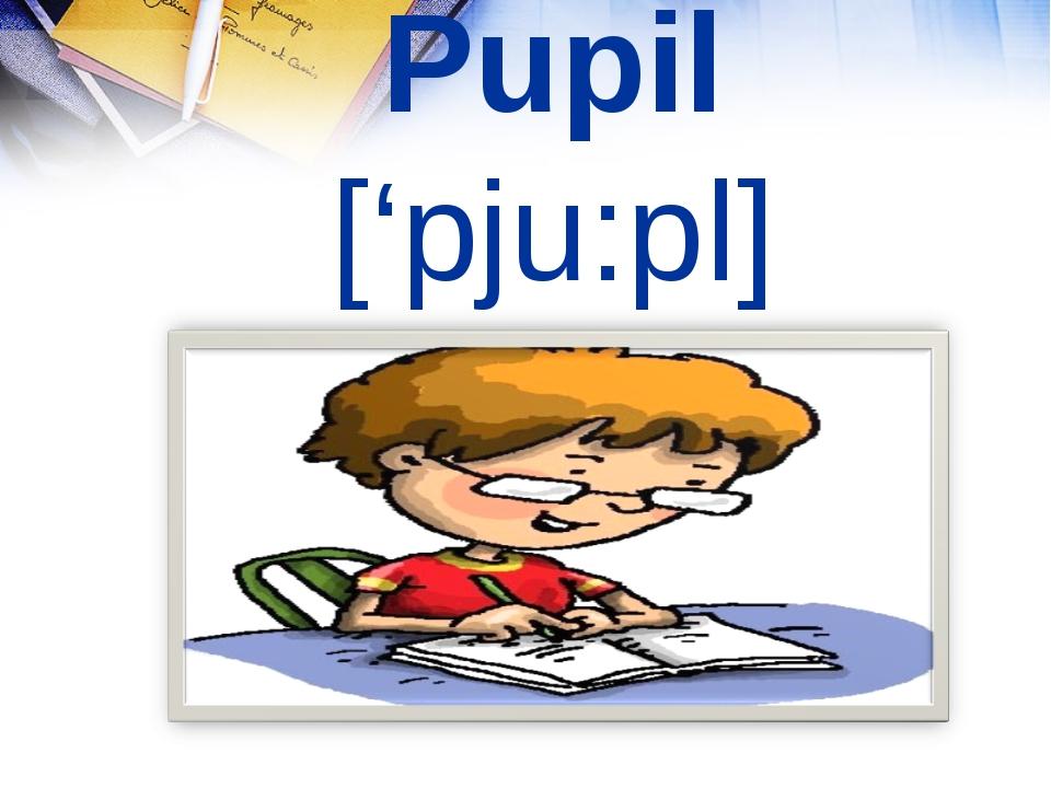 Pupil ['pju:pl]