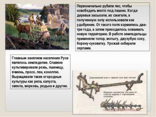 Главным занятием населения Руси являлось земледелие. Славяне культивировали р