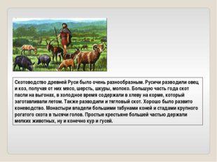 Скотоводство древней Руси было очень разнообразным. Русичи разводили овец и к