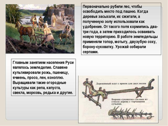 Главным занятием населения Руси являлось земледелие. Славяне культивировали р...