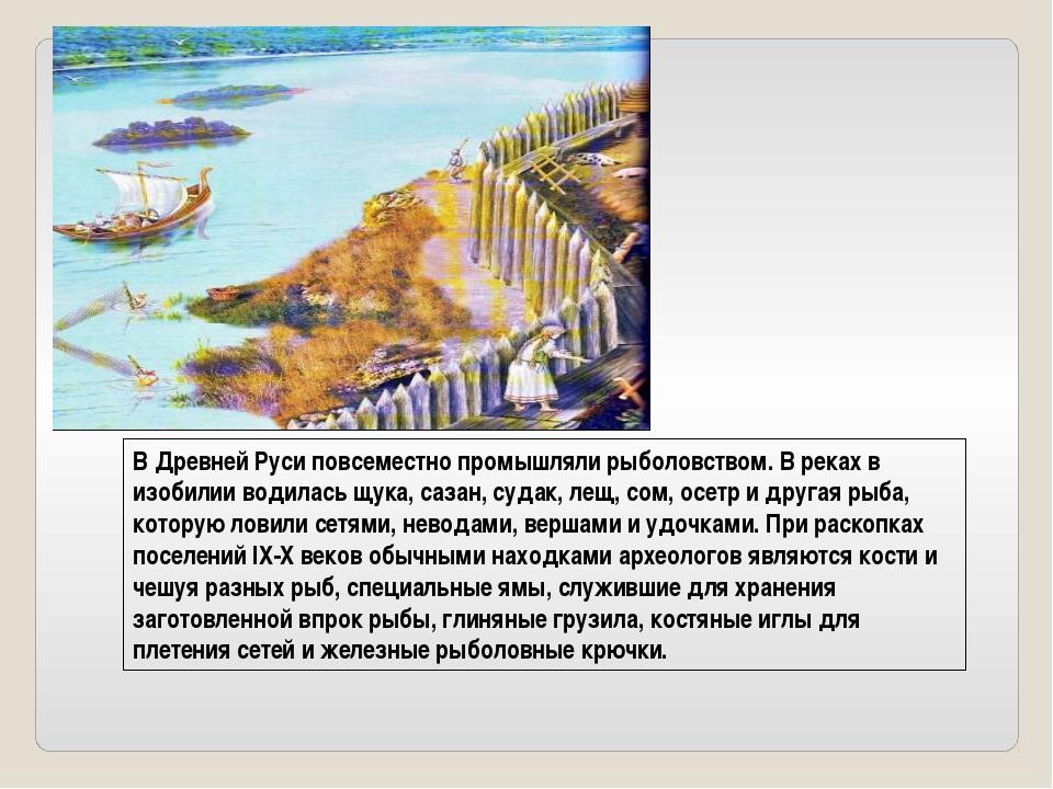 В Древней Руси повсеместно промышляли рыболовством. В реках в изобилии водила...