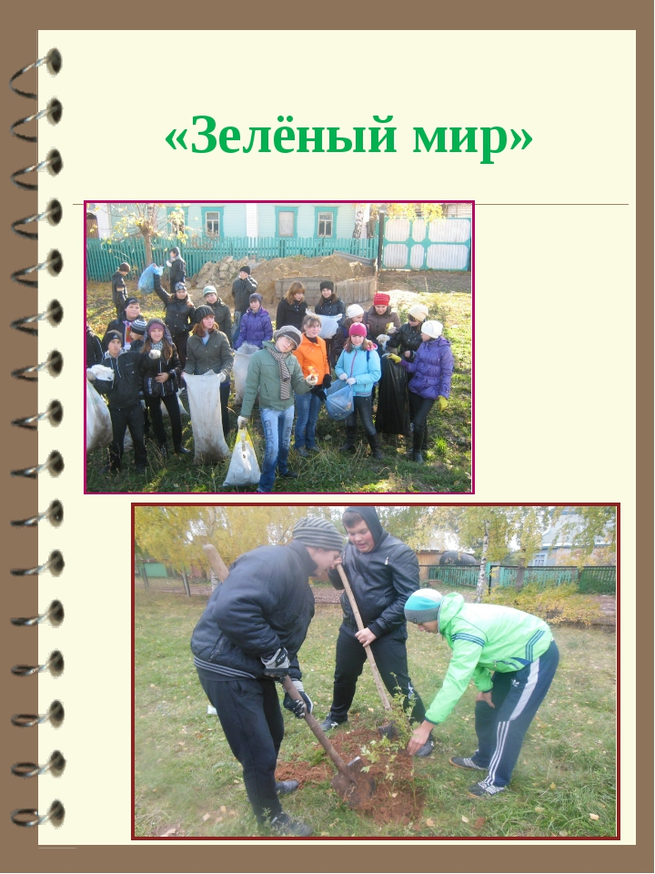 «Зелёный мир»