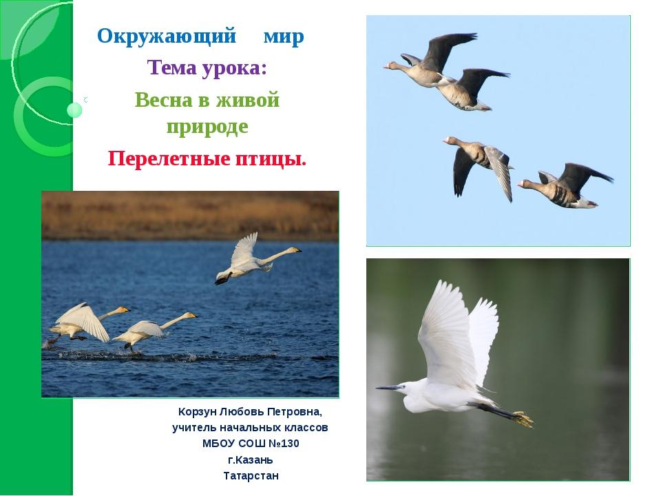 Окружающий мир Тема урока: Весна в живой природе Перелетные птицы. Корзун Лю...