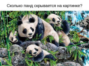 Сколько панд скрывается на картинке?