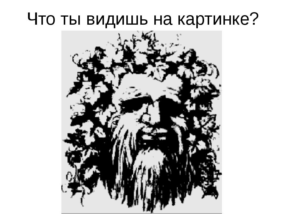 Что ты видишь на картинке?