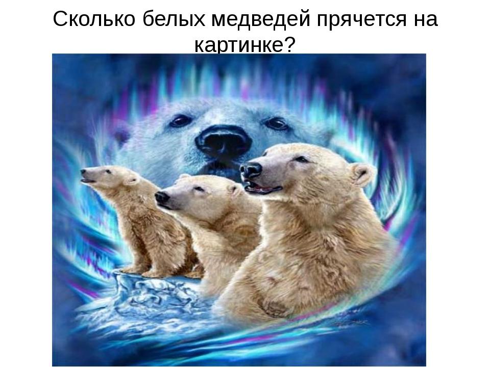 Сколько белых медведей прячется на картинке?