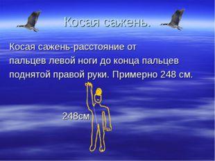 Косая сажень. Косая сажень-расстояние от пальцев левой ноги до конца пальцев