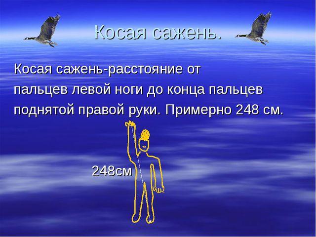 Косая сажень. Косая сажень-расстояние от пальцев левой ноги до конца пальцев...