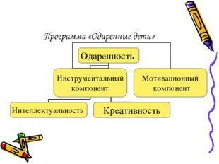 Программа «Одаренные дети»