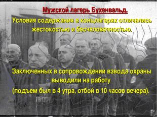 Мужской лагерь Бухенвальд. Условия содержания в концлагерях отличались жесто