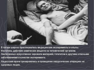 В лагере широко практиковались медицинские эксперименты и опыты. Изучались де