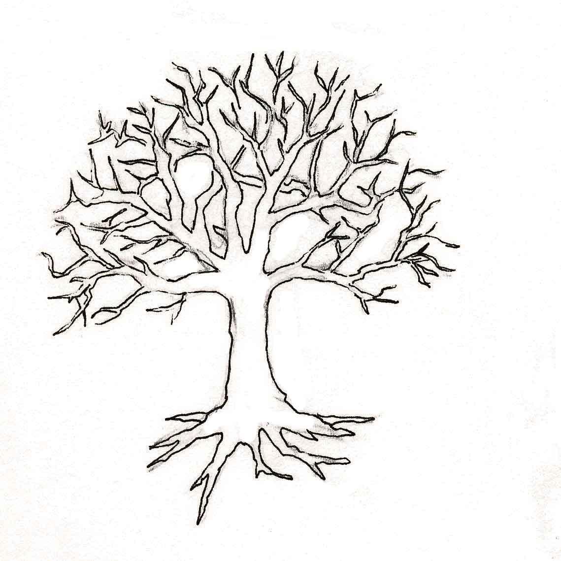Дерево без листьев раскраска Детские раскраски, распечатать, скачать