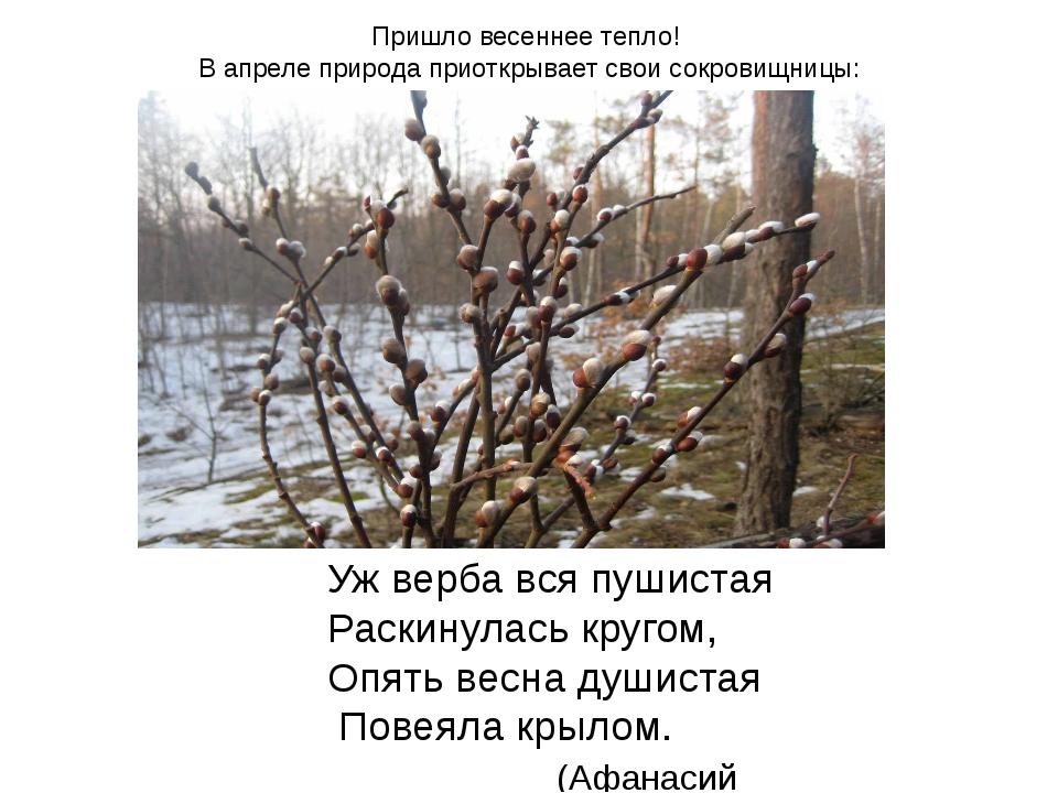 Пришло весеннее тепло! В апреле природа приоткрывает свои сокровищницы: Уж ве...