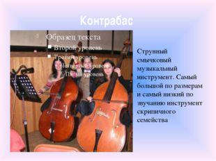 Контрабас Струнный смычковый музыкальный инструмент. Самый большой по размера