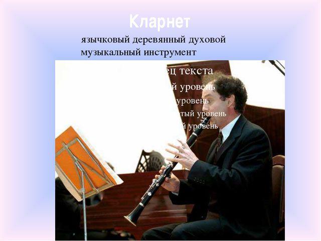 Кларнет язычковый деревянный духовой музыкальный инструмент