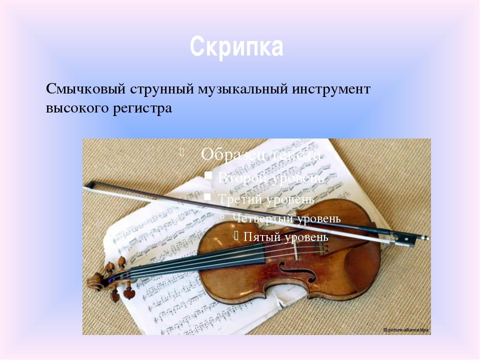 Скрипка Смычковый струнный музыкальный инструмент высокого регистра