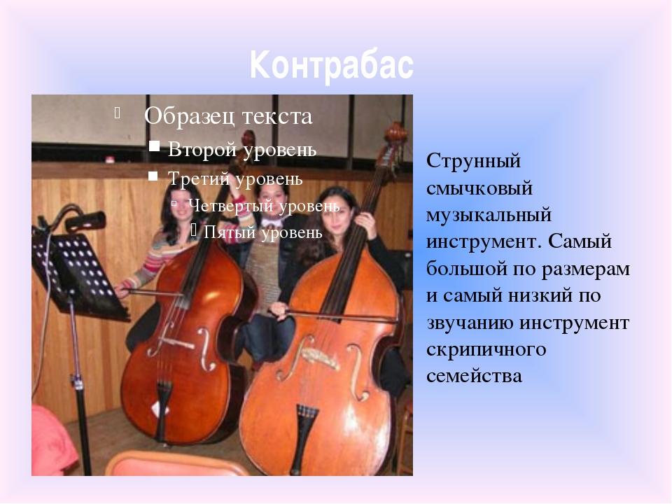 Контрабас Струнный смычковый музыкальный инструмент. Самый большой по размера...
