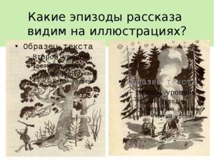 Какие эпизоды рассказа видим на иллюстрациях?