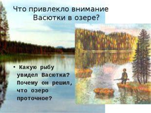 Что привлекло внимание Васютки в озере? Какую рыбу увидел Васютка? Почему он