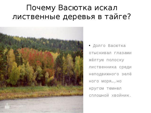 Почему Васютка искал лиственные деревья в тайге? Долго Васютка отыскивал глаз...