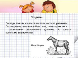 Позднее.. Лошади вышли из лесов и стали жить на равнинах. От хищников спасали